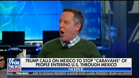 Greg Gutfeld on DACA: 'Democrats Sacrificed' Immigrants 'Just to Score Against Donald Trump'