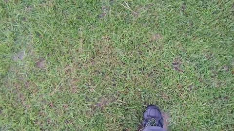 Walking on a giant Lawn/Turf Bubble