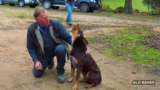 The Singing Dog - Farmer Sings With His Best Mate
