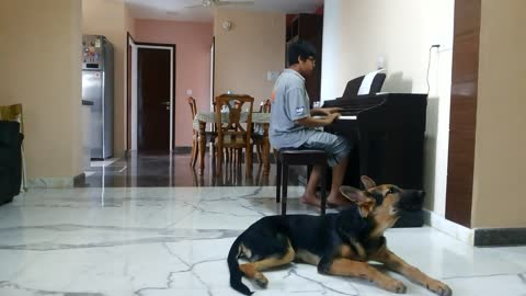 Puppy sings along to kid's piano solo