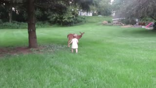 A little girl is playing with a roe deer