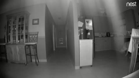 House has a ghost/spirit in it!! Watch for the light