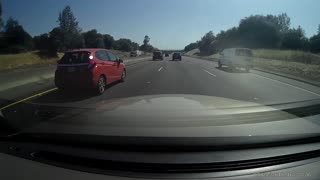 Family of Ducks Play Chicken on Freeway - Video