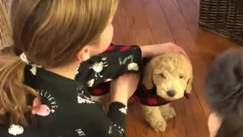 Tears of joy for this little girl's new puppy surprise!