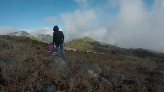 Reforestation on Madeira - Video