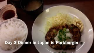 Day 3 Porkburger in Japan, not hamburger for $6.50 No tip!  - Video