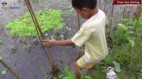 Amazing Boy Fishing, Free line Fishing By Smart Boy in Siem Reap - Fishing techniques