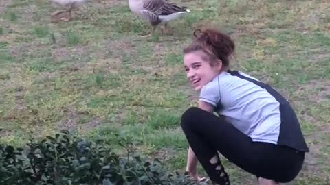 Woman taunts goose, gets dose of instant karma