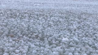Lake Michigan Ice Spheres - Video