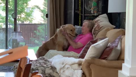 Great-grandmother gets hug from sweet Golden Retriever