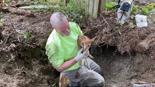 First responders in New Jersey help save a fawn that somehow got stuck in a hole