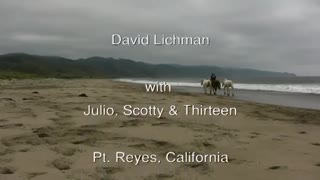 BREATHTAKING! DAVID LICHMAN AND HIS HORSES PLAYING AT LIBERTY - Video