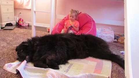 Giant dog protests toddler's bedtime story