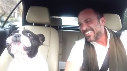 Singing Frenchie Is Back For Another Duet With His Owner