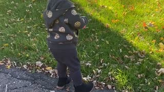 Baby Sister Screams in Excitement to See Brother Return from School