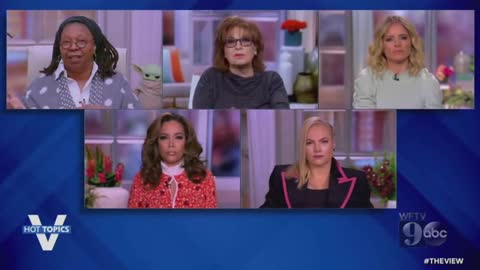 Meghan McCain spars with Joy Behar