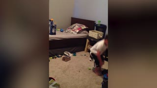 Little Boy Really Hates Cleaning Up