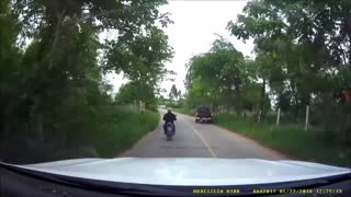 Motorcyclist Catches Snake Crossing Road - Video