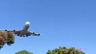 Plane landing on the airport