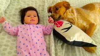 Newborn dancing with dog