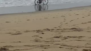Person riding bike through beach wet sand - Video