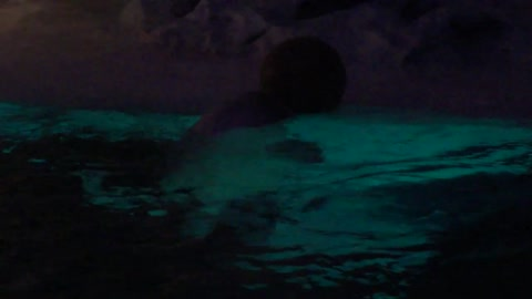 Beluga Whale shows playful side