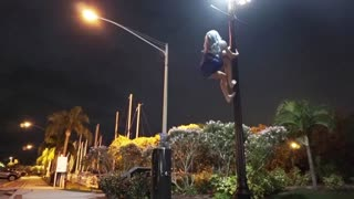 Tricks on a Lamppost - Video