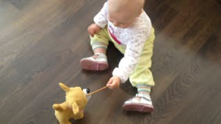 Baby tries feeding snacks to mechanical dog - Video