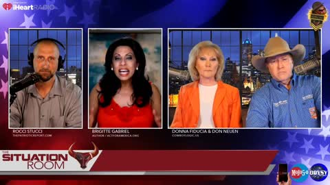 """Brigitte Gabriel: """"Half the country is getting new from the View and Comedy Central"""""""