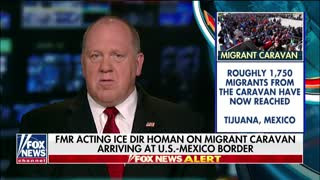 Obama Judge Rules Against Trump Admin's Asylum Ban - Video
