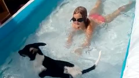 Most Adorable moment when Puppy enters the pool
