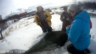Dog Saved From Ice Floe After 2 Months Waiting For Owner 04