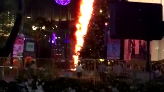 Christmas Tree Catches Fire in Singapore - Video