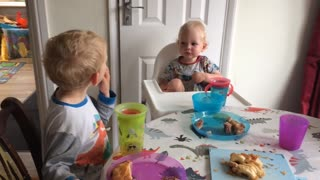 3 Year old teaching his little baby brother French  - Video