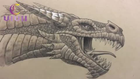 The drawing of the dragon is very beautiful