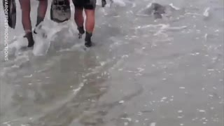 Navy Seals Joined by Real Seal Pup For Training Exercise - Video
