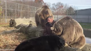 Man hangs out with orphaned bears