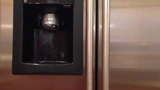 Gatorade dispensing refrigerator? - Video