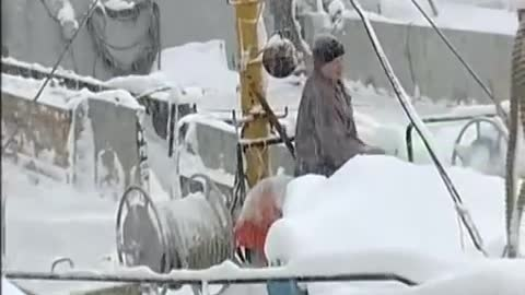 Russian sailors rescue a dog stranded on an iceberg