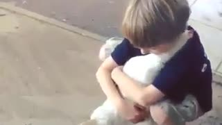 Animals love hugs - Video