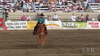 Mules Compete In Reining – AWESOME!