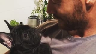 French Bulldog puppy discovers whistling sound