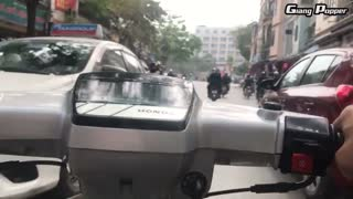 Insane POV footage of rush hour in Vietnam - Video