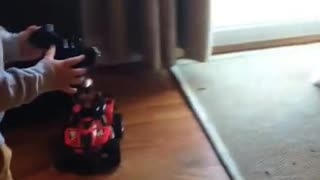 Boy & Dog Indoor Race Car Chase Video  - Video