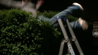 Man ladder to bushes - Video