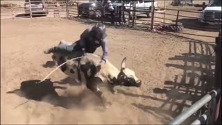 Cowboy Protection  - Video