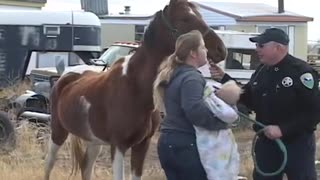 Woman With Abused Horses Freaks Out When News Crew Shows Up With Camera - Video