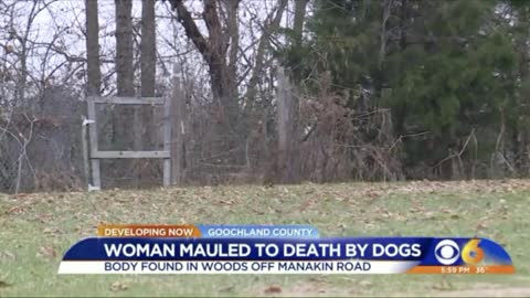 Woman Taking Her Dogs For Walk Is Mauled to Death By Them