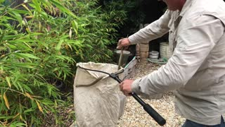 Snake Catchers Adelaide Capture Brown Snake