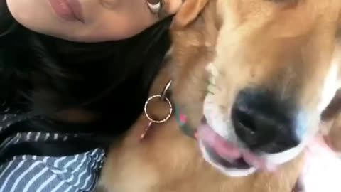Dogy Taking Selfe With Her Owner